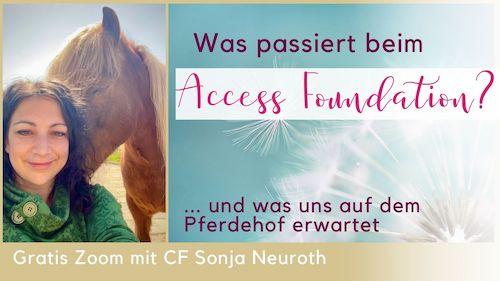 Access Foundation Steiermark Pferde