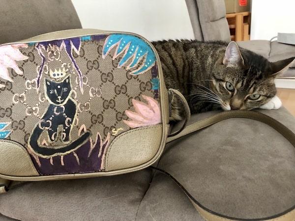 Gucci bemalt Katze