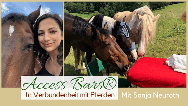 Access Bars Pferde Sonja Neuroth