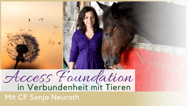 Access Foundation Sonja Neuroth Pferde