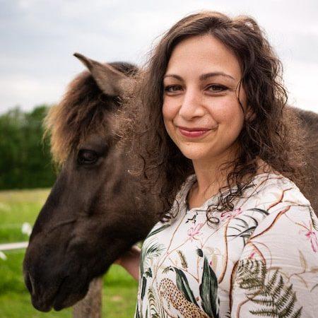 Sonja Neuroth Krafttiere Pferd